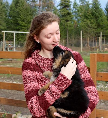 bristo-puppies-11-2016-00001