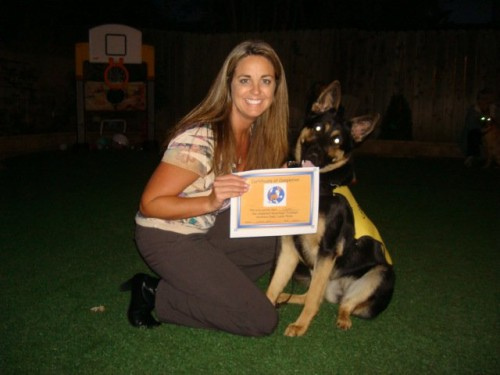AKC test and level 3 grad