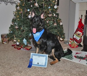 First-Place-Obedience!