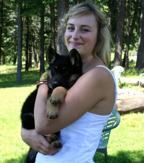 German Shepherd puppy, Yes!